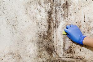 3 solutions pour traiter l'humidité dans son habitation